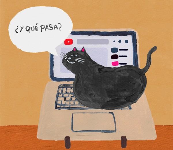 Gato Esteban #2
